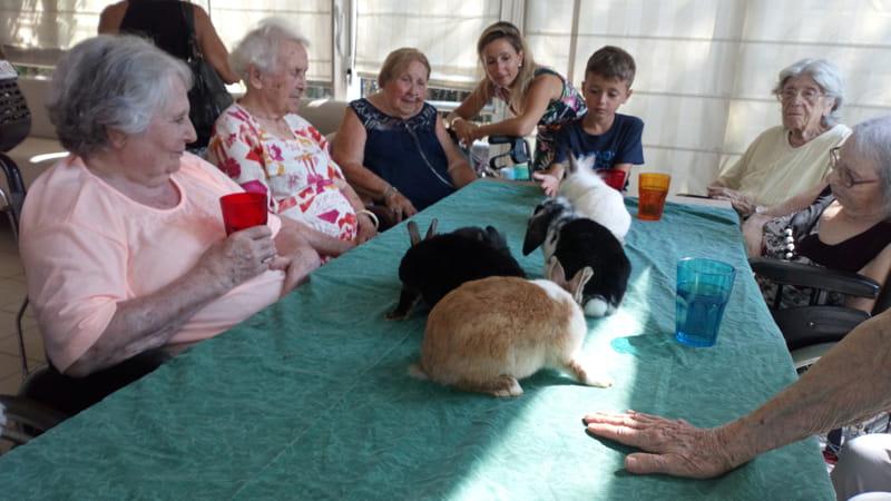 La zoothérapie en maison de retraite.