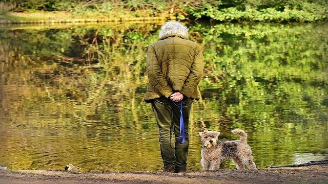 Personne âgée promenant son chien.