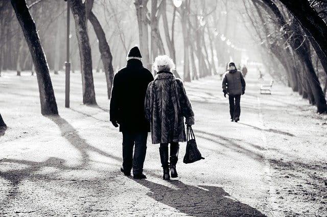 Les sorties en EHPAD cet hiver.